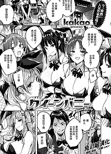 中国漫画 女王 的小兔子, big breasts , bunny girl